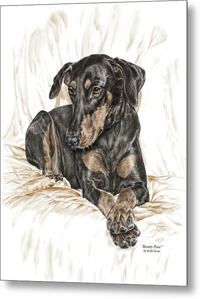 Beauty Pose - Doberman Pinscher Dog With Natural Ears Metal Print