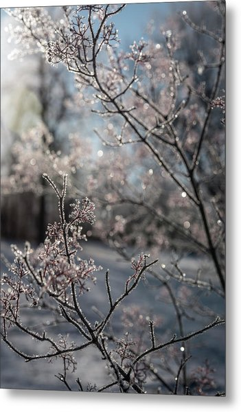 Beauty Within Metal Print