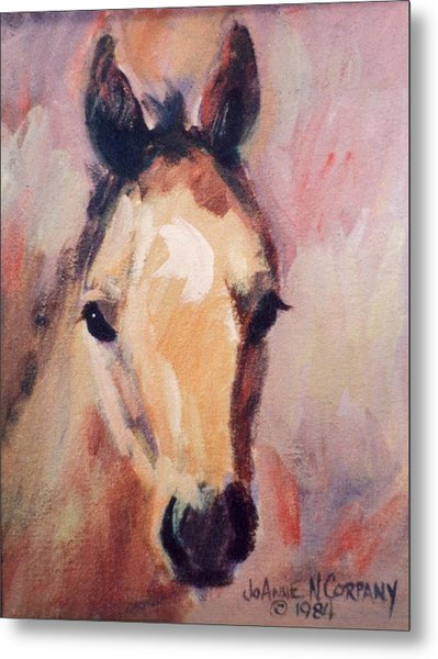 Belle  Portrait Of Filly Metal Print