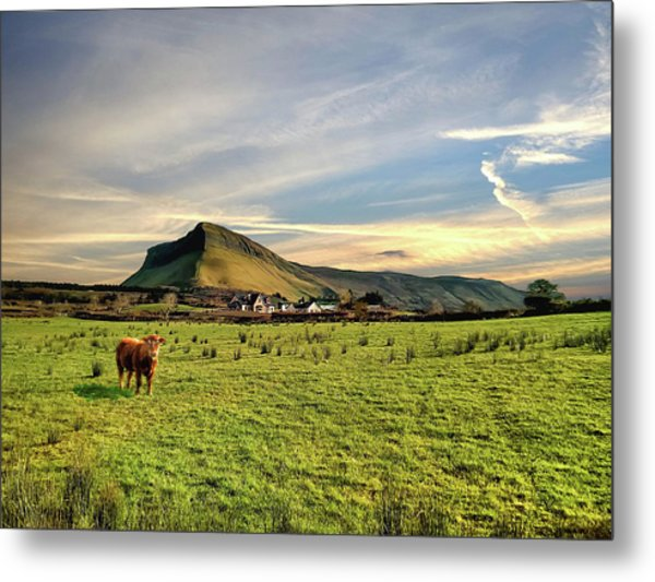 Benbulben From Henry's Bar Metal Print