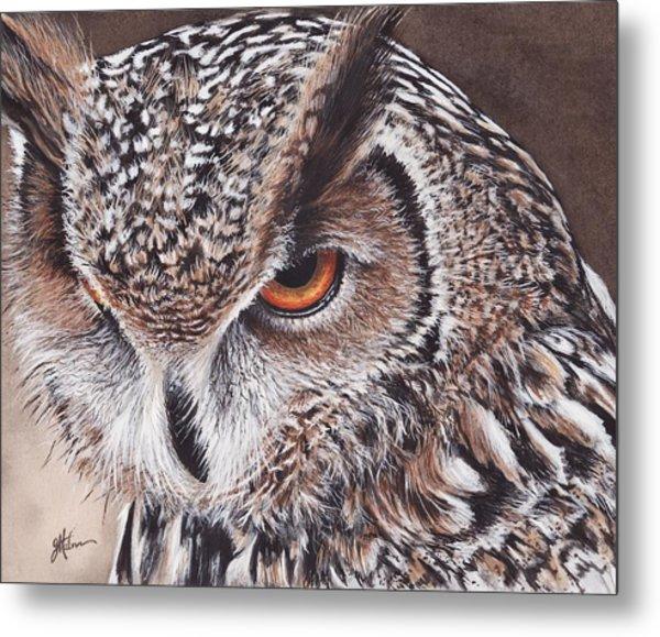 Bengal Eagle Owl Metal Print