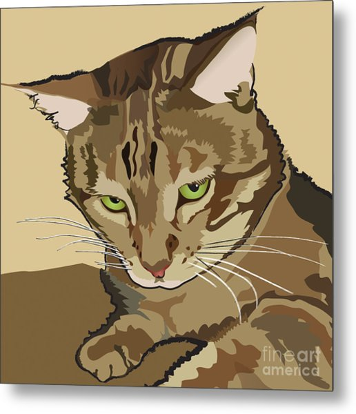 Bengal Kitty Pet Portrait Metal Print