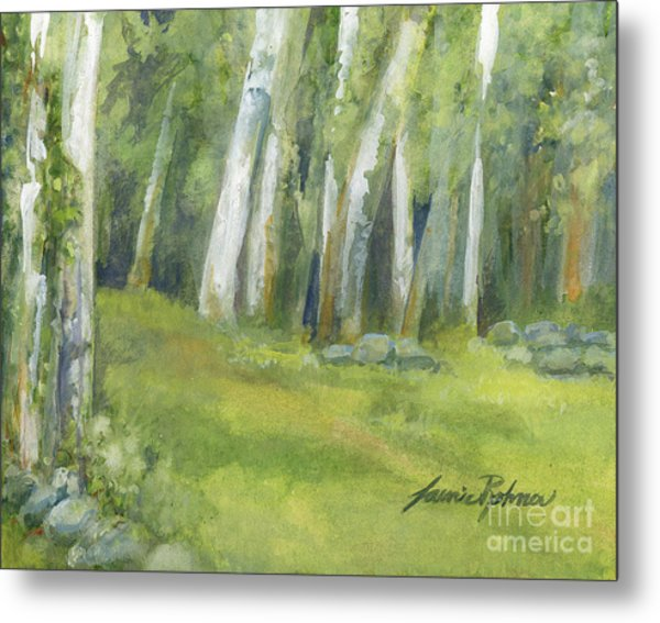 Birch Trees And Spring Field Metal Print
