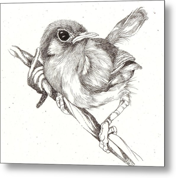 Bird On A Wire Metal Print by Deborah Wetschensky