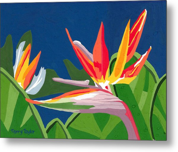 Birds Of Paradise Metal Print
