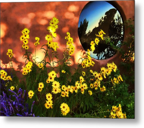 Black-eyed Susans And Adobe Metal Print