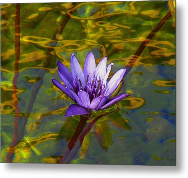 Blooming Into Life's Peace Dedicated To Toni R. Neal Metal Print by Sherwanda Irvin