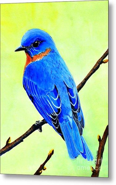 Blue Bird King Metal Print