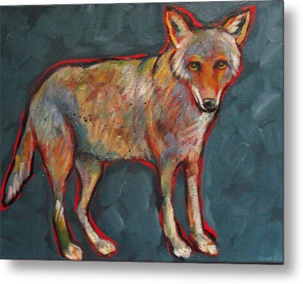 Blue Coyote Santa Fe Style Metal Print