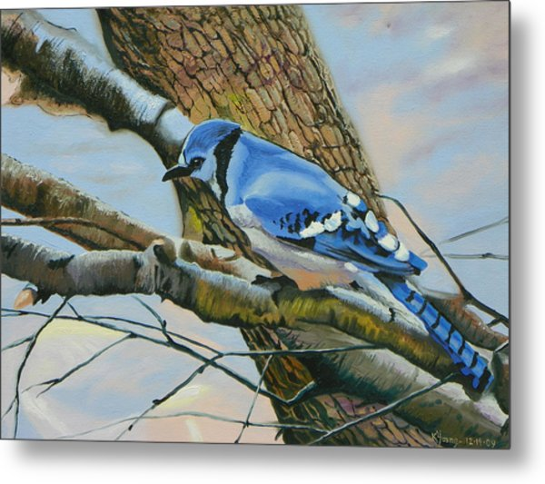 Blue Jay Metal Print by Kenneth Young