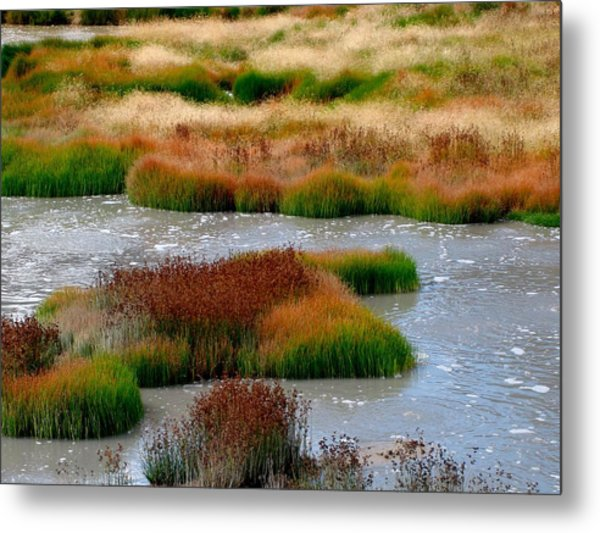 Boiling Mud And Grass Metal Print