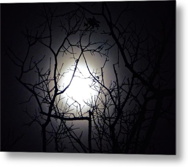 Branches To The Moon Metal Print