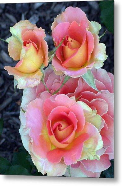 Brass Band Roses Metal Print