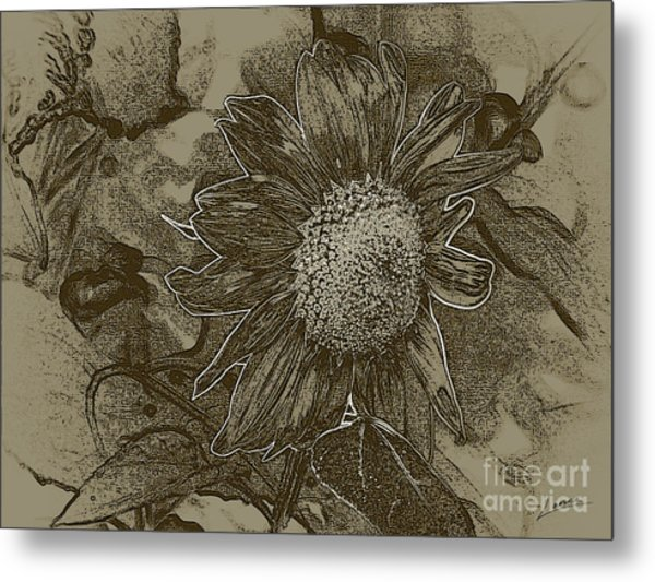 Bronzed Out Sunflower Metal Print