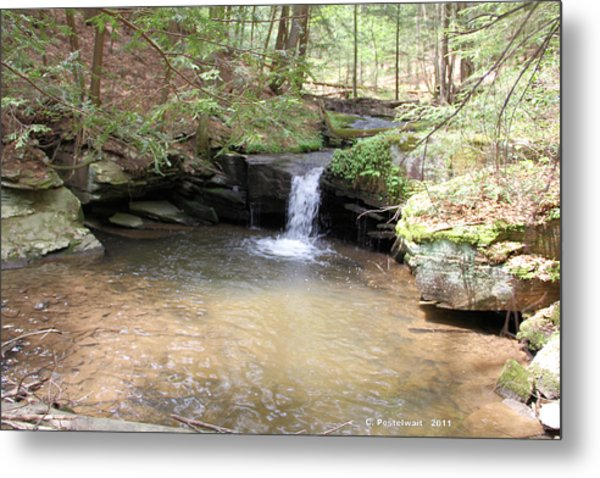Brook Trout Falls Metal Print
