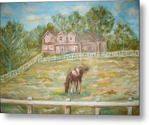 Brown And White Horse Metal Print by Joseph Sandora Jr