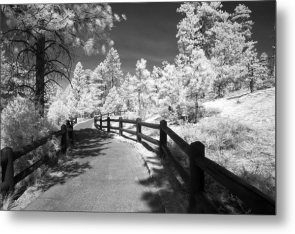 Bryce Canyon Trail Metal Print