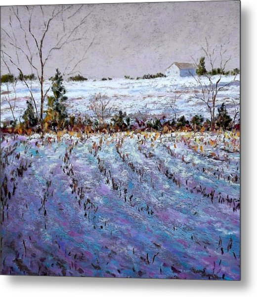 Bucks County January Fields Metal Print by Bob Richey