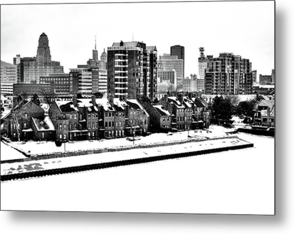 Buffalo In Black And White Metal Print