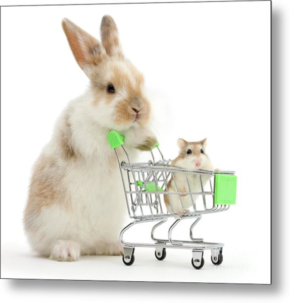Bunny Shopping Metal Print