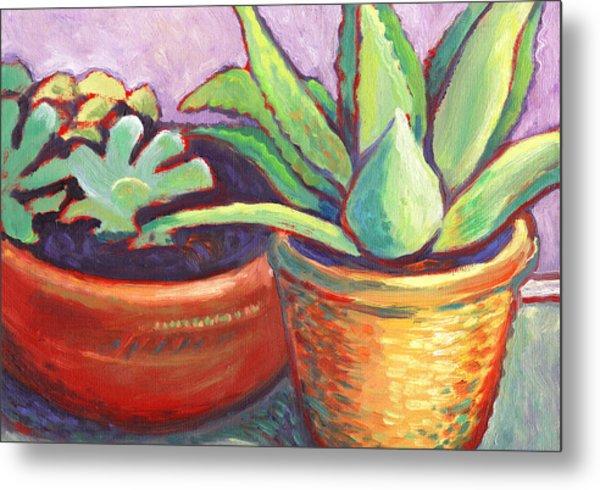 Cactus In Planters Metal Print