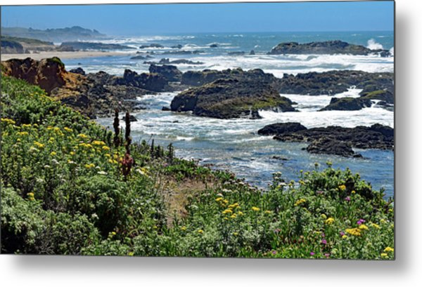 California Coast No. 9-1 Metal Print