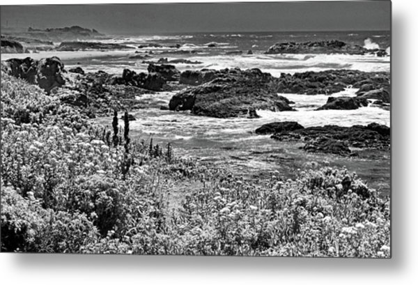 California Coast No. 9-2 Metal Print