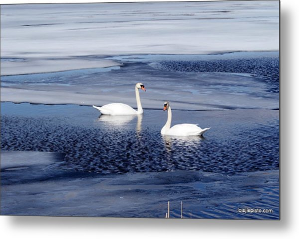 Can't Wait For Spring Metal Print by Lois Lepisto