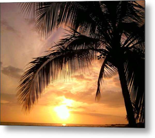 Captivating Metal Print by Charles  Jennison