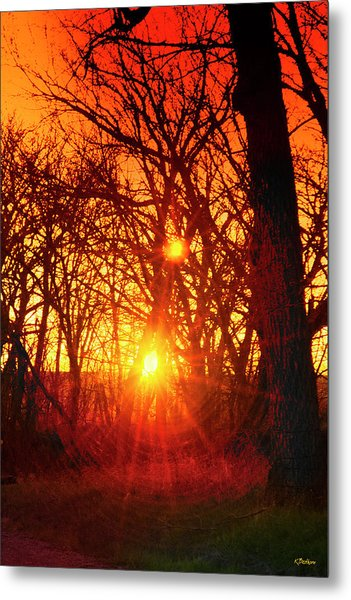 Captured By The Light Metal Print