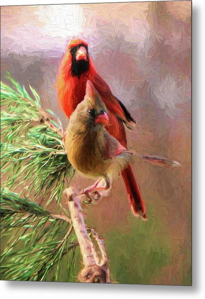 Cardinals2 Metal Print