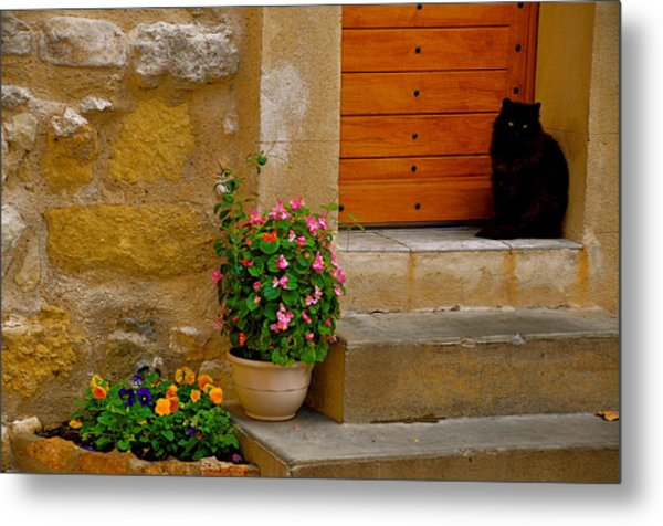 Cat In Capestang France Metal Print by K C Lynch