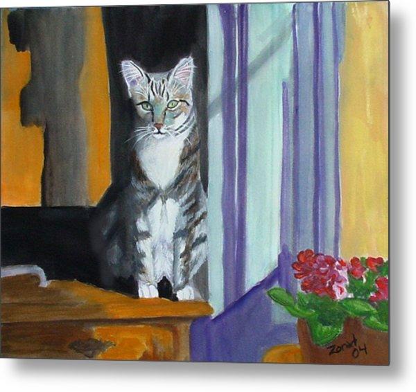 Cat In Window Metal Print