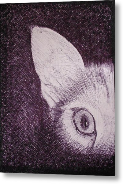 Cat Lurking Metal Print by SAIGON De Manila