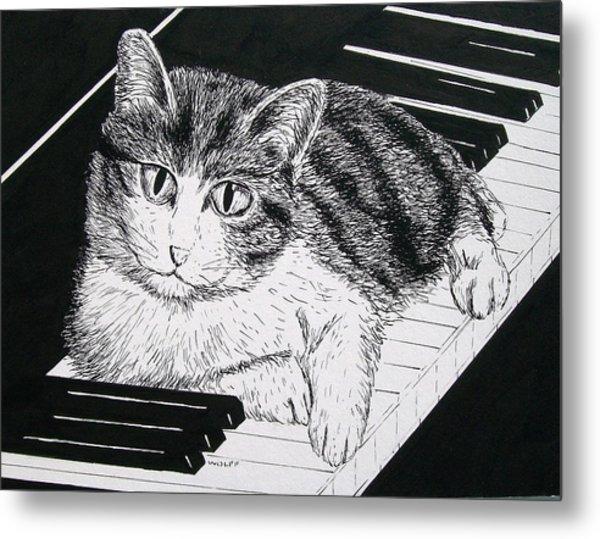 Cat On Piano Metal Print