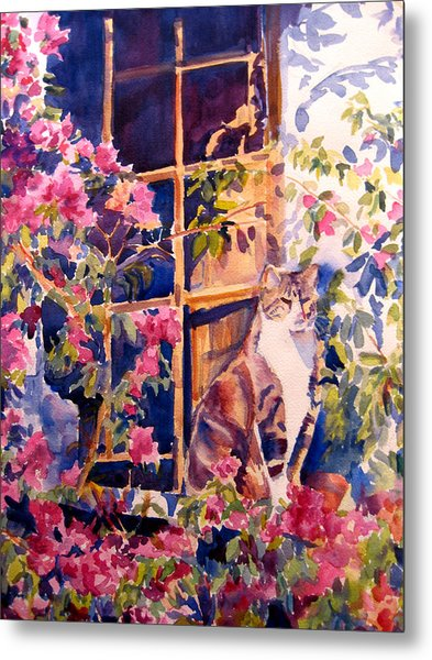 Cat On The Sill In Trapani Metal Print by Joyce Kanyuk