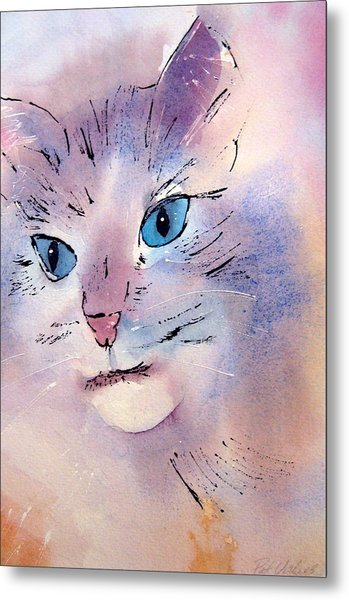 Cat Metal Print by Pat Vickers