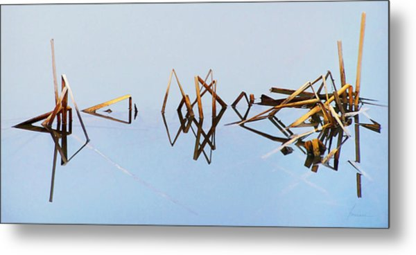 Cattail Reflections Metal Print