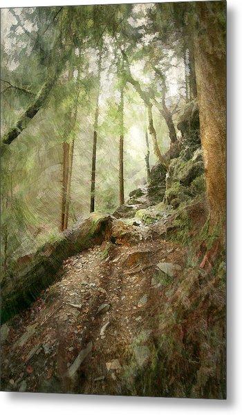Cavern Walk ..... Metal Print by Richie Dean