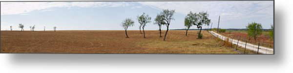 Central Texas Landscape Metal Print