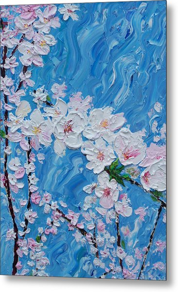 Cherry Blossoms 1 Metal Print by Timothy Clayton