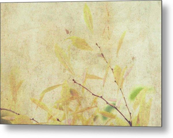 Cherry Branch On Rice Paper Metal Print