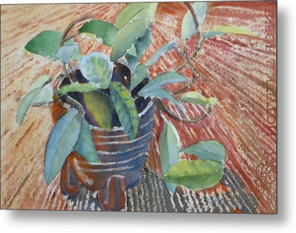 Clay Pot Metal Print