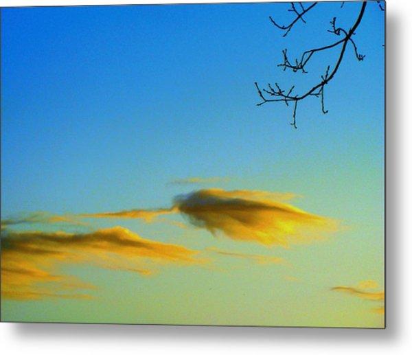 Cloud Heron Metal Print