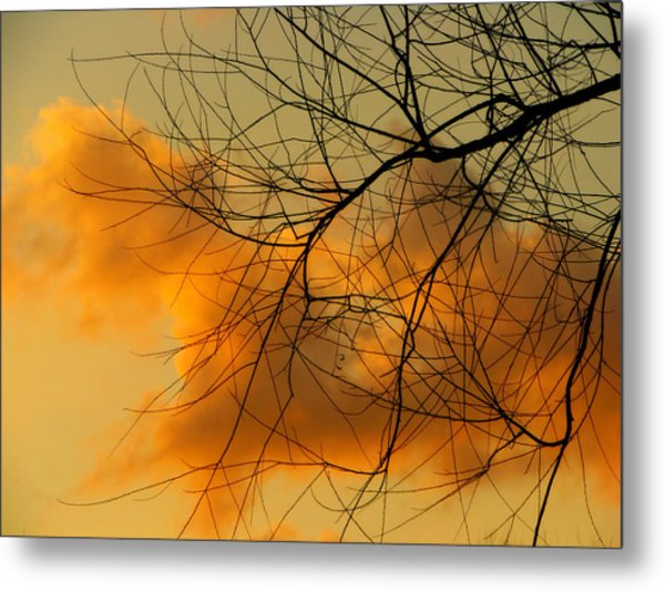 Cloudy Silhouette Metal Print by Dottie Dees