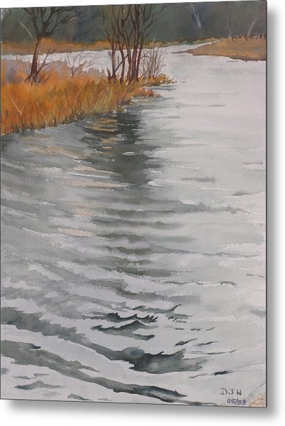 Cold Water Metal Print by Debbie Homewood