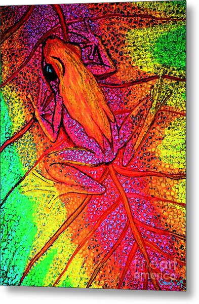 Colorful Frog On Leaf Metal Print by Nick Gustafson
