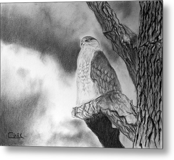 Metal Print featuring the drawing Coming Storm by Wade Clark
