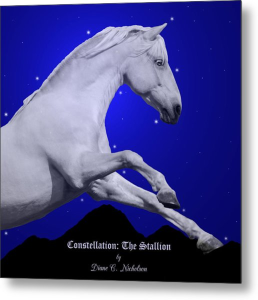 Constellation The Stallion Metal Print by Diane C Nicholson