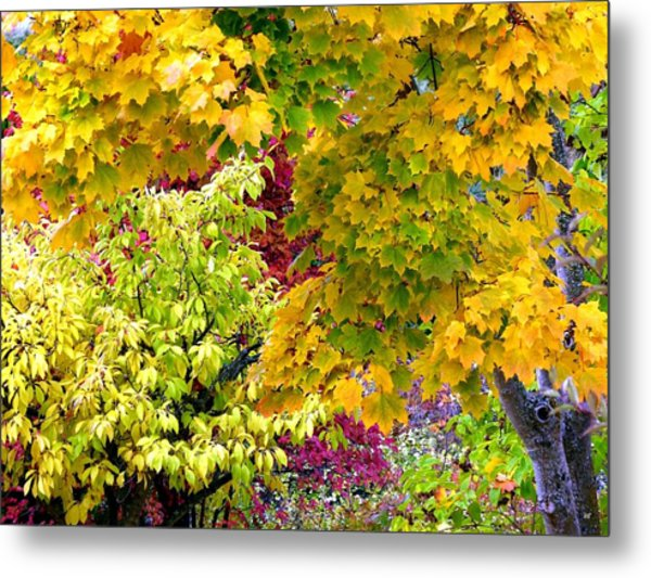Country Color 15 Metal Print